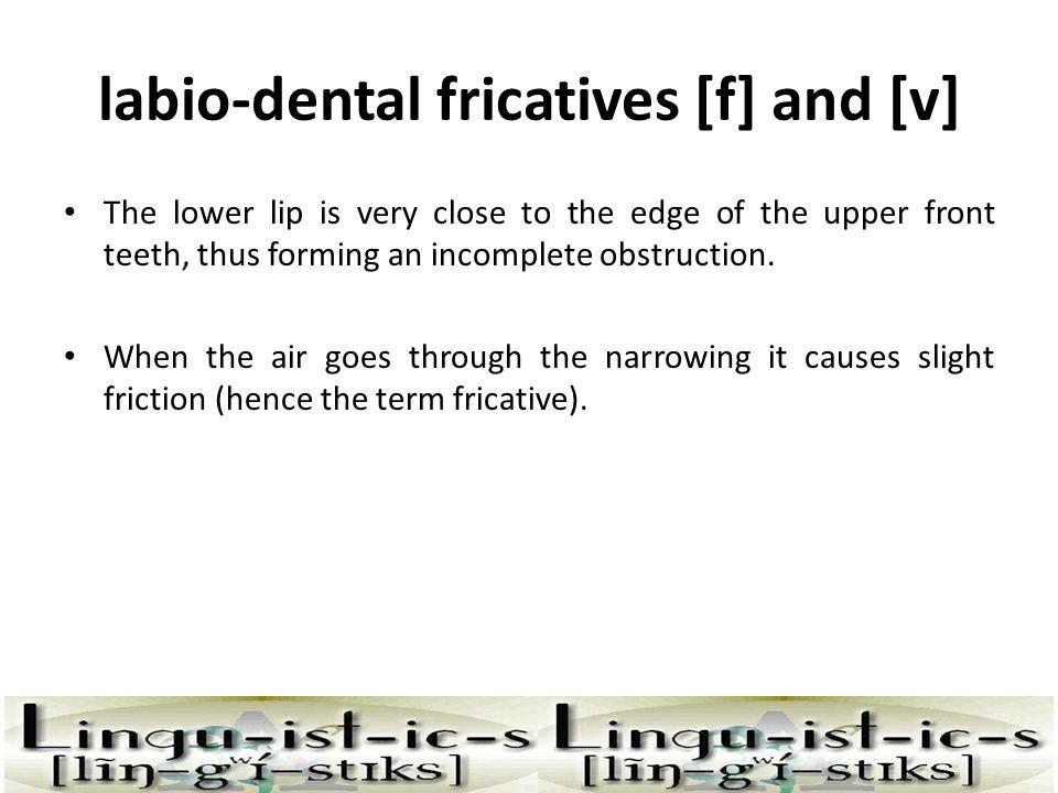 labio-dental fricatives [f] and [v]